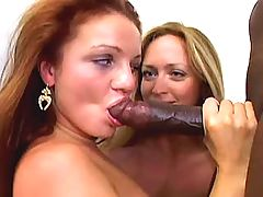 Interracial lesbians toy around with a strap on